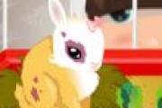 Tavşan Süsleme