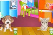 Köpek Ve Kedi Bakımı