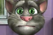 Konuşan Kedi Tom