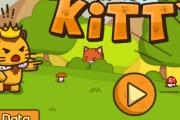 Dövüşçü Kedi