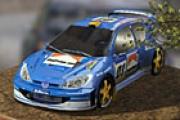 3D Rally Ateşi