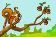 Avcı Sincap
