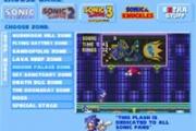 Sonic Kirpi